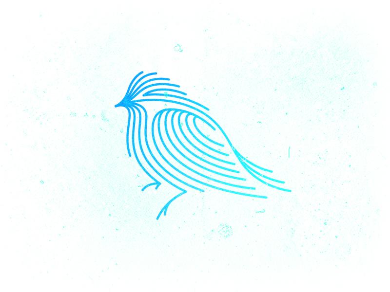 Птица индиго